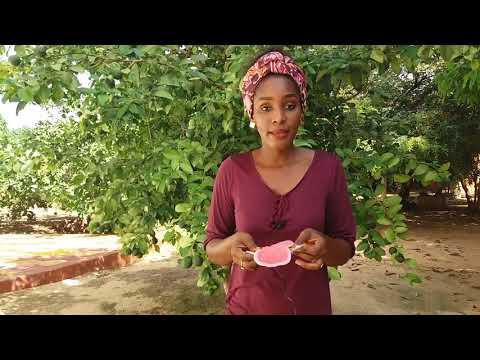 Vidéo présentation et démonstration serviettes hygiéniques ApiAfrique - Wolof